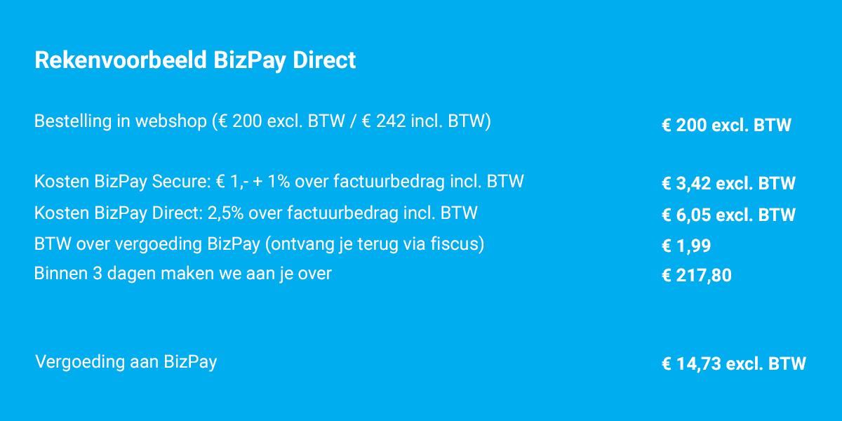 rekenvoorbeeld bizpay direct